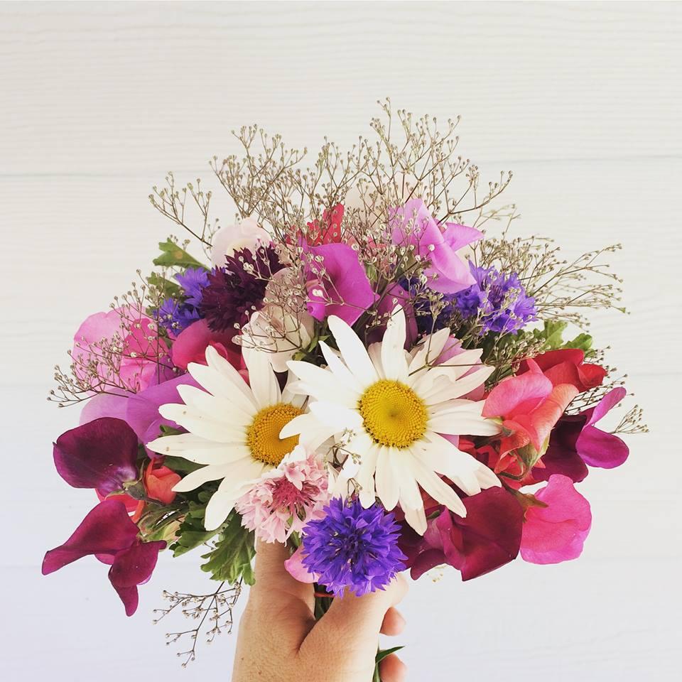 The Unpretentious Flower
